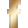 icona-facebook-dorata