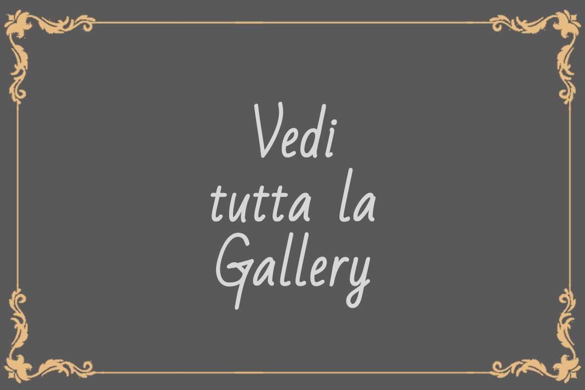 vai-alla-gallery_1