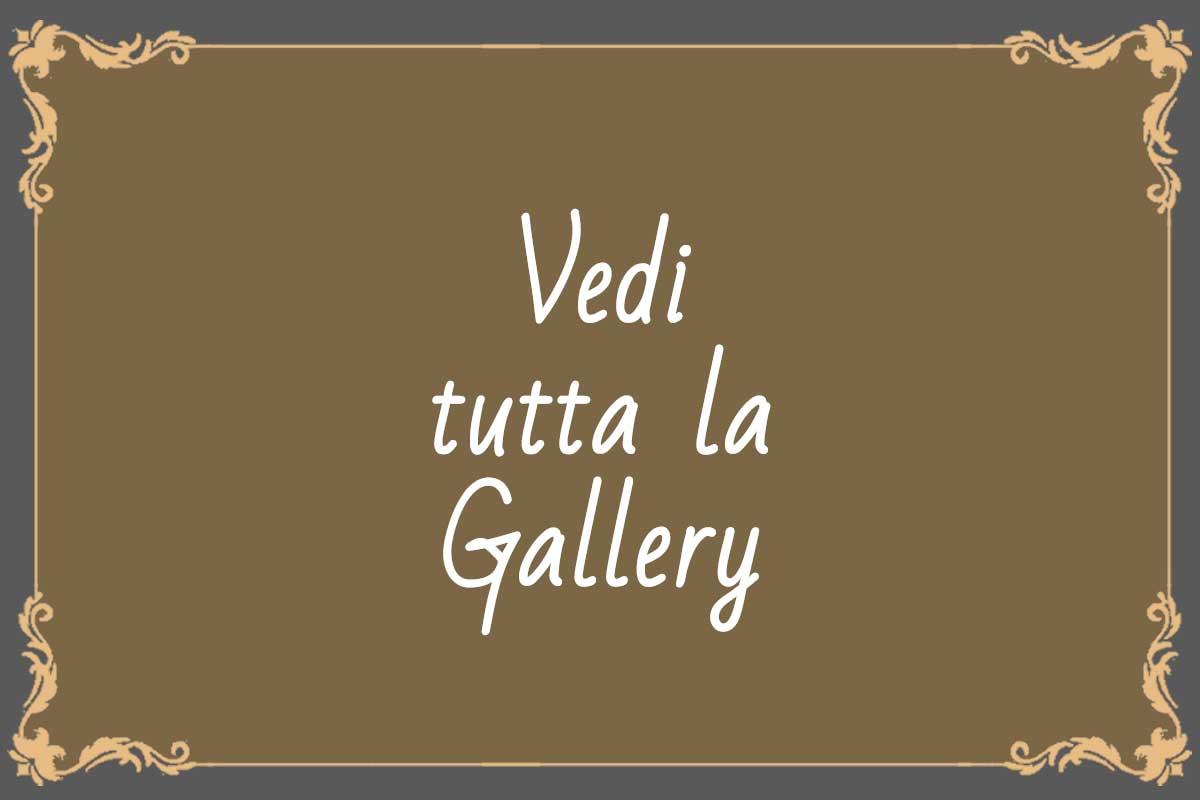 vai-alla-gallery_2